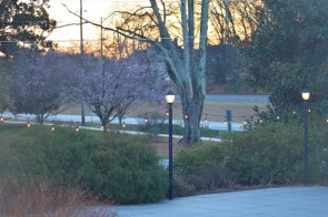 2015-03-17 00.45.07 173 Carlyle House Historic Downtown Norcross